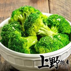 【上野物產】急凍生鮮看的見 嚴選翠綠花椰菜 (1000g土10%/包) x 5包