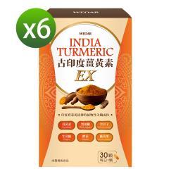 WEDAR 古印度薑黃EX 美孅超值6盒組(30顆/盒)