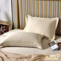 Betrise窗台秘密 環保印染抗菌天絲素色歐式壓框薄枕套X2