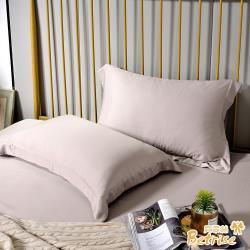 Betrise擦肩而過 環保印染抗菌天絲素色歐式壓框薄枕套X2