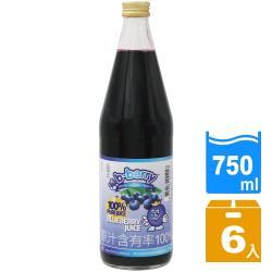 【碧貝瑞b-berry】荷蘭進口100%原汁頂級藍莓汁(750ml/瓶)x6瓶