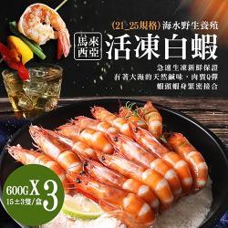 築地一番鮮-巨無霸馬來海水養殖活凍21/25生白蝦3盒(600G/15±3尾)