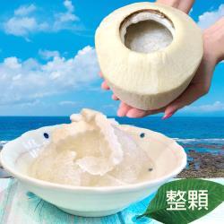 【遊食趣】泰香椰椰凍/椰汁寒天剉冰 X4顆(椰子/椰肉/果凍/水果/冰品)