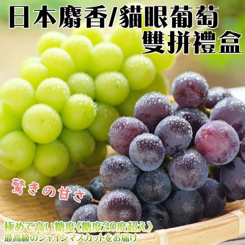 果物樂園-日本麝香/貓眼葡萄雙拼禮盒2組(貓眼1串+麝香1串)