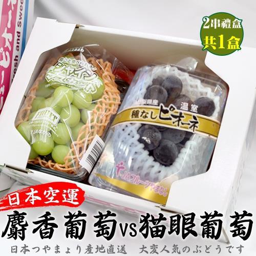 果物樂園-日本麝香/貓眼葡萄雙拼禮盒1組(貓眼1串+麝香1串)