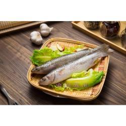 樂鱻嚴選-生鮮豆仔魚 2尾/包  x 12入裝 (400g/包+-10%)