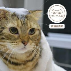 牧貓台南館-純貓頂級專業SPA美容體驗-電子票券