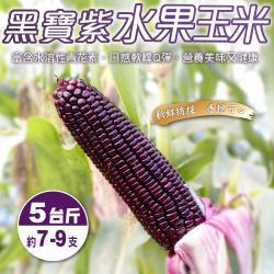 果農直配-黑寶水果玉米(5斤±10%/含箱重)