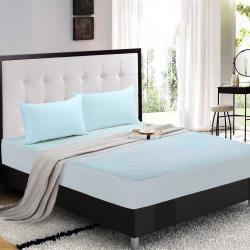 NINO1881 舒柔天絲棉床包防水墊2入-加大