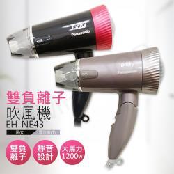 【國際牌Panasonic】雙負離子吹風機 EH-NE43(黑/雲灰紫)  兩色可選