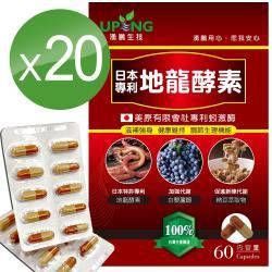 【湧鵬生技】日本專利地龍酵素20入組(蚓激酶;白藜蘆醇;60顆/盒;共1200顆)