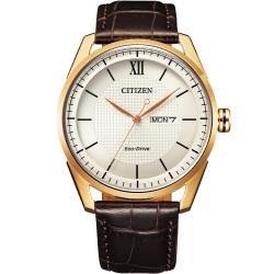CITIZEN  星辰 GENTS 經典格紋紳士腕錶(AW0082-19A)42mm