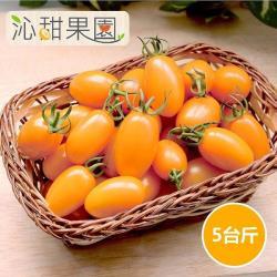 [沁甜果園SSN]橙蜜香小番茄(5斤x1盒)