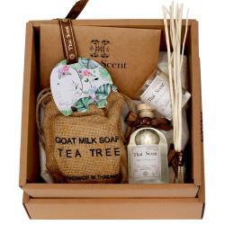 ThaiScent泰香  美好的一天香氛禮盒(香氣任選)