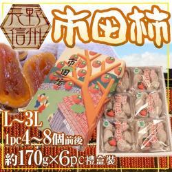 果物樂園-日本原裝長野市田柿禮盒(6包入/約1kg±10%)