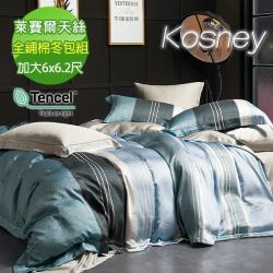 KOSNEY  尼蒂羅  加大100%天絲全舖棉四件式兩用被冬包組