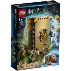LEGO樂高積木 76384  202101 Harry Potter 哈利波特系列 - 霍格華茲溫室草藥學教室