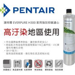 【濱特爾】EVERPURE H-300 家用強效抑垢型濾心