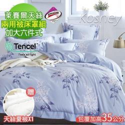 KOSNEY  夏日庭榭藍  吸濕排汗萊賽爾天絲加大六件式兩用被床罩組送天絲夏被