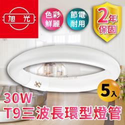 【旭光】30W T9三波長環型燈管(5入組)