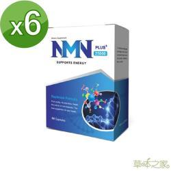 草本之家-NMN+25000(30粒X6盒)