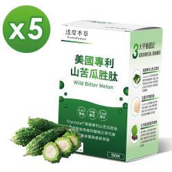 【達摩本草】美國專利山苦瓜胜肽x5盒 (90粒/盒)