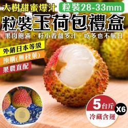 果農直配-大樹玉荷包禮盒(6盒/每盒5斤±10%含盒重)(去枝去葉/粒狀)