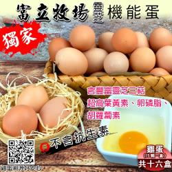 【禾鴻x富立牧場】靈芝機能蛋15顆x16盒
