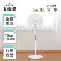 大家源14吋電風扇TCY-851401 (2入組)