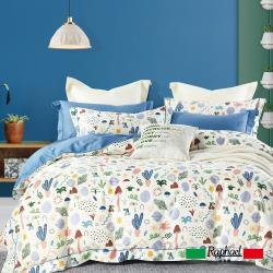 Raphael 拉斐爾 牧歌 純棉加大四件式床包兩用被套組