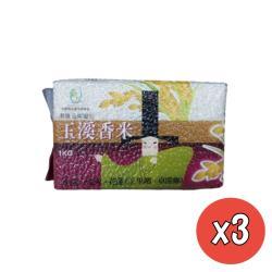 【玉溪米】頂級花東縱谷玉溪香米1kgx3包(台梗4號/磚形真空包裝)