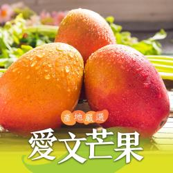 【愛上新鮮】產地嚴選愛文芒果4盒組(3台斤±5%/盒/約6~8顆)