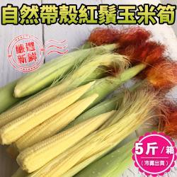 【禾鴻】新鮮自然帶殼紅鬚玉米筍5斤x1箱