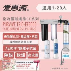 愛惠浦 全流量強效碳纖維系列三道式淨水器 EVERPURE PURVIVE TRIO-EF6000