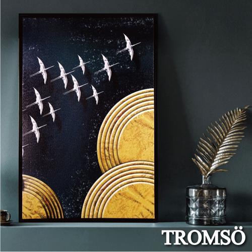 TROMSO北歐時代風尚有框畫-星辰繡鳥WA183/