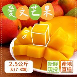 預購 家購網嚴選 外銷等級 枋山愛文芒果 2.5kgx2盒(中7-8顆/盒)