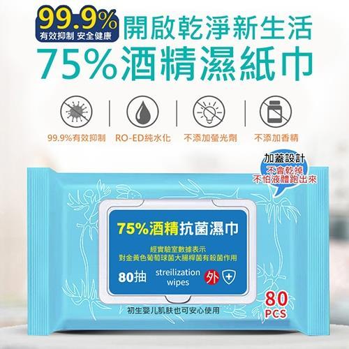 酒精抗菌濕紙巾80抽(2入組)/