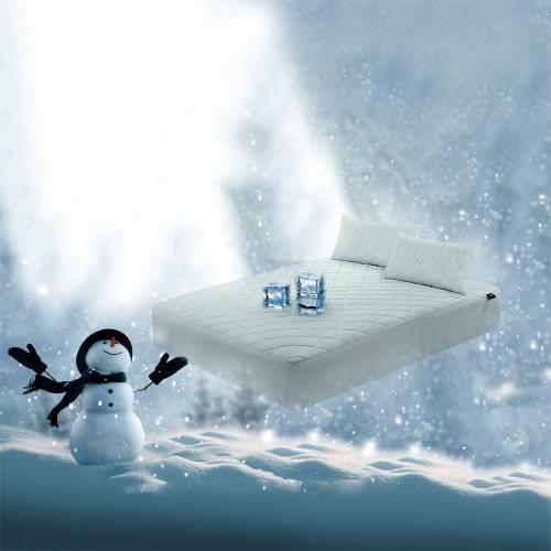 NINO1881奈米急凍抗菌防潑水冰絲涼墊-雙人