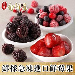 【旬鮮屋】鮮採急凍莓果10包組