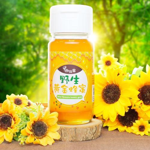 【趣採蜜】國際2星風味品質獎之野生黃金蜂蜜-摘星組