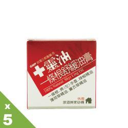 【十靈本舖】十靈油一條根舒緩油膏(9g)5入