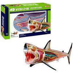 【4D MASTER】動物透視系列-大白鯊 26111