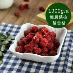 買一送一【幸美生技】花青系列冷凍莓果共2包組(1kg/包 口味任選 栽種藍莓/蔓越莓/覆盆莓/黑莓)