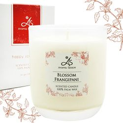 【ThaiScent泰香】天然植物蠟香氛蠟燭165g (7款香氣任選)